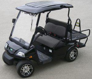 T-Sport 1 Golf Cart